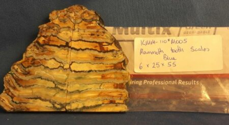 Stabilised Mammoth Tooth Scales (BLUE)